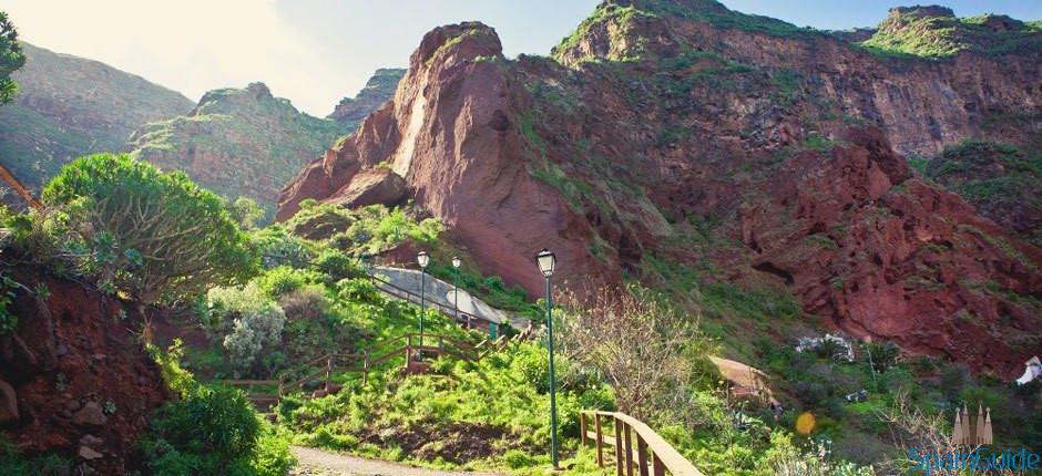 monumento_natural_barranco_de_guayadeque-gran_canaria_6