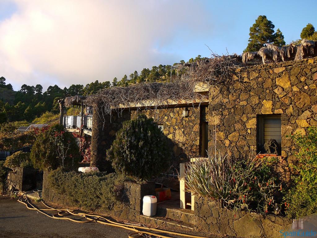 Los Lomos vineyard