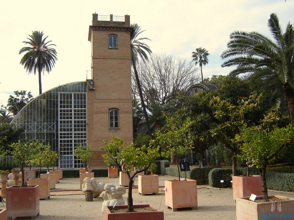 Jardin botanico valencia - Jardin botanico valencia ...